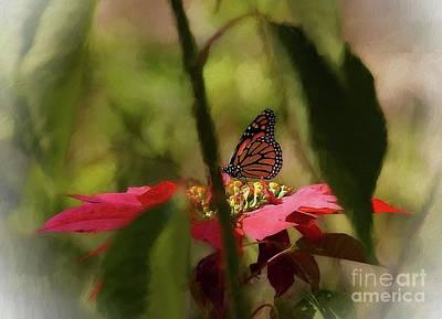 Photograph - The Hidden Monarch by John Kolenberg