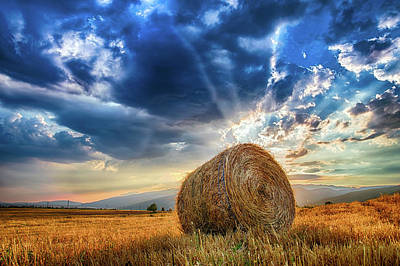 Photograph - The Hidden Sun by Plamen Petkov