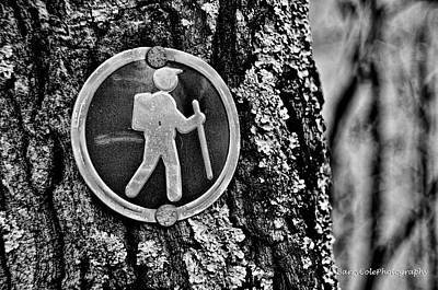 Photograph - The Hiking Sign by Barry Cole