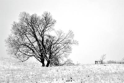 Photograph - The Hill by Tracy Rice Frame Of Mind