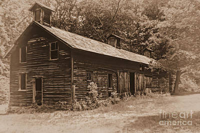 Photograph - The Hog Barn by Debra Fedchin