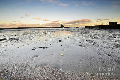 The Holy Island Of Lindisfarne Print by Nichola Denny