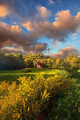 Photograph - The Hope That You've Forgotten by Phil Koch