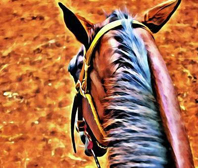 Photograph - The Horse 1 by Kristalin Davis