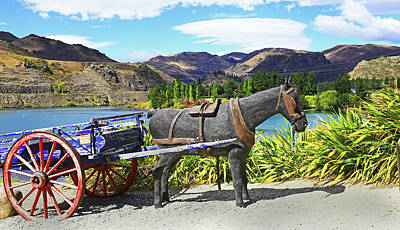 Photograph - The Horse At Old Cromwell by Nareeta Martin