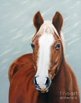 Painting - The Horse Cody by Jimmie Bartlett