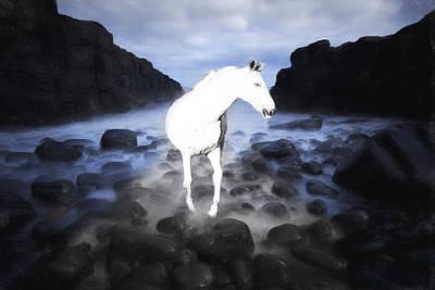 Digital Art - The Horse by Tommytechno Sweden