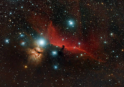 Photograph - The Horsehead Nebula by Martin Heigan