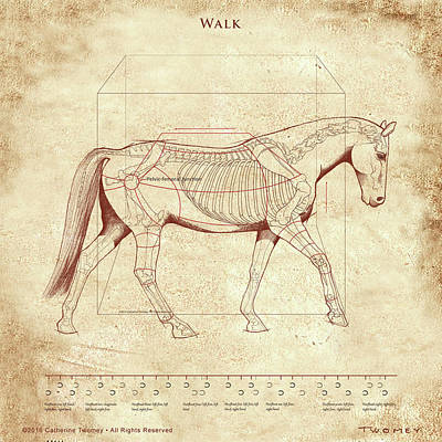 Animals Paintings - The Horses Walk Revealed by Catherine Twomey