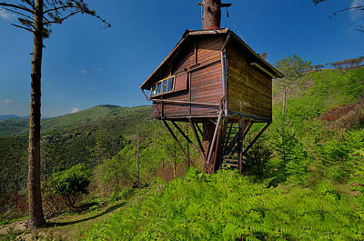 Photograph - The House On The Tree - La Casa Sull'albero by Enrico Pelos