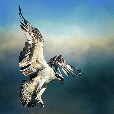 Photograph - The Hunter by Davandra Cribbie
