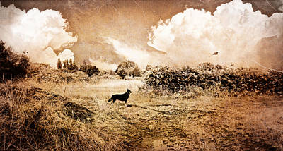 Photograph - The Hunting Instinct by Glenn McCarthy Art and Photography