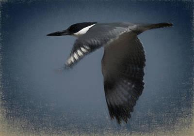 Kingfisher Digital Art - The Illusive Kingfisher by Ernie Echols