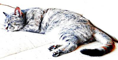 Photograph - The Impression Of Sleep by Dorothy Berry-Lound