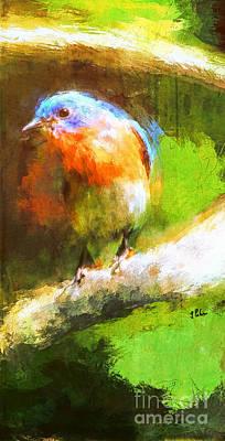 Photograph - The Impressive Bluebird by Tina LeCour