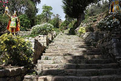 Photograph - The Inca Steps On The Isla Del Sol by Aidan Moran