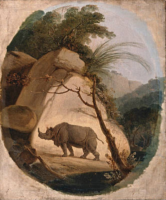 Indian Rhinoceros Painting - The Indian Rhinoceros by Thomas Daniell