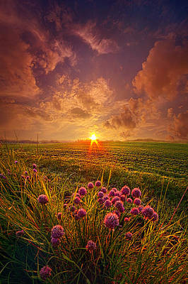 Heaven Photograph - The Infinite Space Between Words by Phil Koch