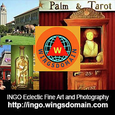 Photograph - Wingsdomain Ingo Eclectic Fine Art And Photography Wall Art Home Decor And Office Decor by Wingsdomain Art and Photography