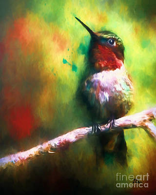 Photograph - The Intellectual Hummingbird by Tina LeCour