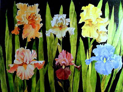 Painting - The Iris Garden by Carol Grimes