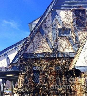 Photograph - The Ivy Cottage by Vicki Lynn Sodora