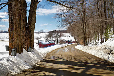 Photograph - The Jenne Farm Collecting Maple Sap by Jeff Folger