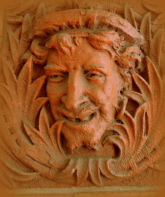 Georgia Red Clay Photograph - The Jester by Linda Covino