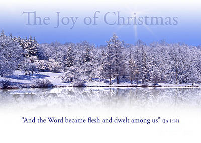 Photograph - The Joy Of Christmas Greeting Card by Ed Dooley