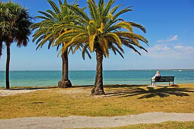 The Joy Of Sea And Palms Original