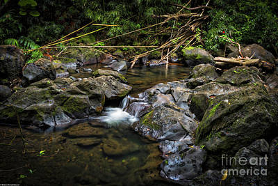 Photograph - The Judd Trail by Mitch Shindelbower