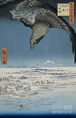 Painting - The Jumantsubo Plain In Susaki Near Fukagawa, 1857 by Hiroshige