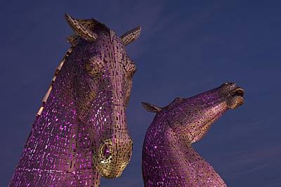 Photograph - The Kelpies At Dawn by Stephen Taylor