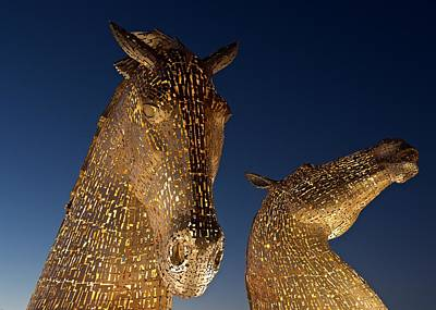 Photograph - The Kelpies Illuminated Yellow by Stephen Taylor