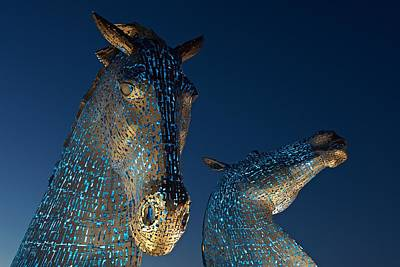Photograph - The Kelpies Lit In Blue by Stephen Taylor