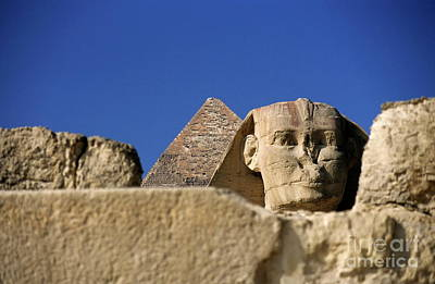 The Khephren Pyramid And The Great Sphinx Of Giza Print by Sami Sarkis