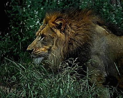 Male Lion Digital Art - The King Digital Art by Ernie Echols