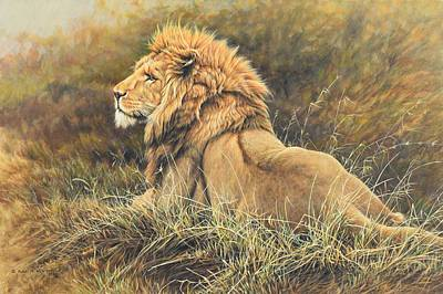 Animals Photos - The King Lion Study by Alan M Hunt