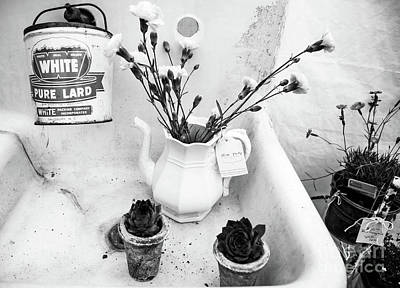 Pottery Sinks Photograph - The Kitchen Sink by April Canada