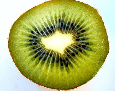 The Kiwi Original