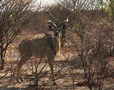 Digital Art - The Kudu Da by Ernie Echols