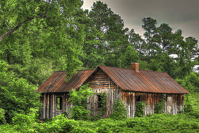Rusty Tin Roof Photograph - The Kudzu House 2 by Reid Callaway
