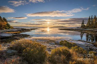 Reid Park Photograph - The Lagoon At Reid by Benjamin Williamson