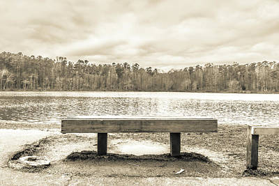 Photograph - The Lake #12 by Wade Brooks