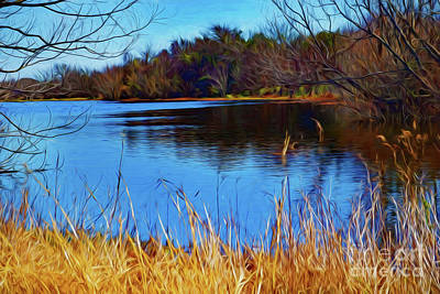 Photograph - The Lake 122317-2 by Ray Shrewsberry