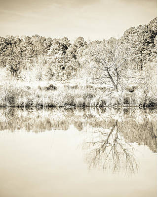 Photograph - The Lake #47 by Wade Brooks