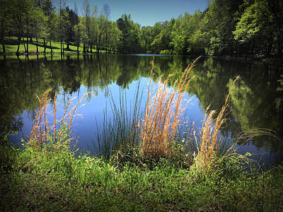 Photograph - The Lake At Musgrove Mill by Kelly Hazel