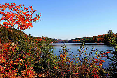 Photograph - The Lake In Autumn by Debbie Oppermann