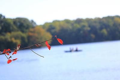 Photograph - The Lake by Tony Umana