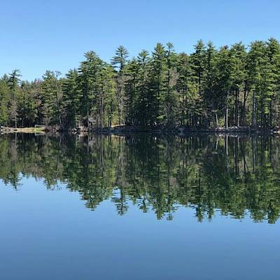 The Lake Was So Beautiful This Morning Art Print